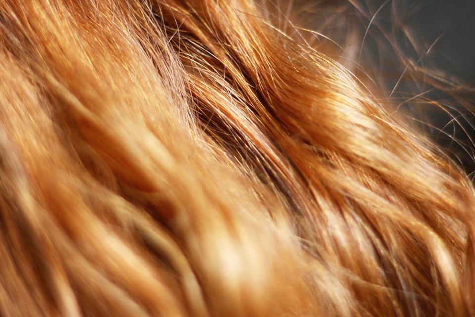 Les masques médicaux et les shampooings pour les cheveux